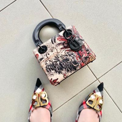 Mini Lady Dior in Embroidered Motif