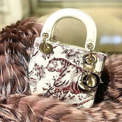 Burgundy Mini Lady Dior Toile De Jouy Bag