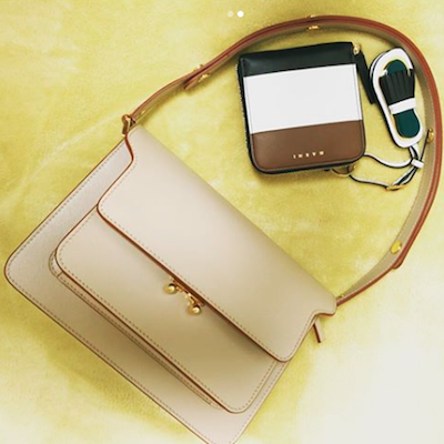 BEIGE TRUNK BAG