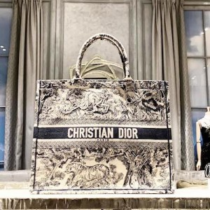 BLUE DIOR BOOK TOTE TOILE DE JOUY BAG